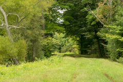 Path in the forest near Howard Eaton reservoir. In Northwestern Pennsylvania late summer Royalty Free Stock Image