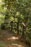 Path in a forest with railing Stock Images