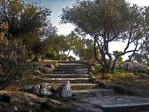 Path in the forest. A path to Philopappos hill near Acropolis, Athens Royalty Free Stock Photography