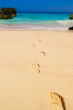 The path forward. Foot prints in the beach sand, leading to the water, Bermuda Royalty Free Stock Photos