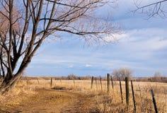 Path Forward Through a Bright Field Stock Photos