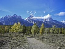 a path in the front of the rocky mountains stock photos