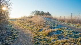 Path through a frozen field at sunrise Royalty Free Stock Photo
