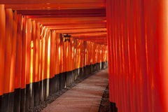 Path At Fushimi Inari Taisha Royalty Free Stock Photos