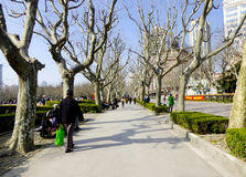 A path of Fuxing Park Royalty Free Stock Photos