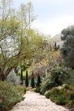 Path through garden stock images