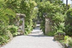 Path in Garden. Path in  in Abbey Garden, Tresco Isles, Scilly Islands, England Stock Photo