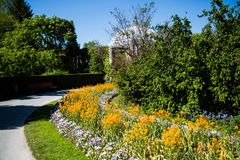 Path in a garden area. Gardeining Royalty Free Stock Images
