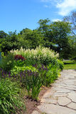 Path through garden. A path through a garden with butterfly bush Royalty Free Stock Image