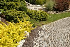 Path in the garden. Stock Photography