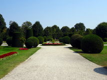 Path in a garden. Gravel-paved path in a botanical garden Stock Photos
