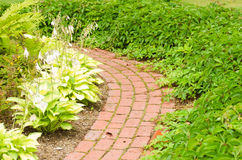 Path in garden Royalty Free Stock Images