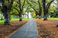 Path in a garden. Melbourne Victoria Stock Images
