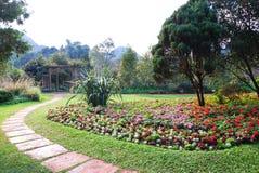 Path with garden Royalty Free Stock Photos