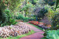 Path with garden Royalty Free Stock Images