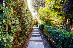 Path of the garden. In Vila Nove the Gaia, Portugal Stock Image
