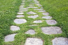 The path in the garden. Stone walkway on green grass Royalty Free Stock Image