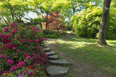 Path in the garden. Is a summer day Royalty Free Stock Photography