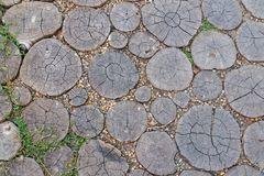 The path in the garden of wooden round logs and the stones. Wood texture. Background in rustic style. Top view. The path in the garden of wooden round logs and royalty free stock images