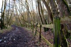 Path at Gathurst Stock Photo