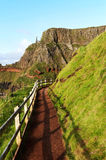 Path at the Giants Causeway Stock Photography
