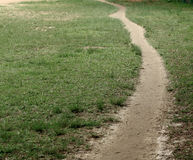 Path on grass Royalty Free Stock Photography