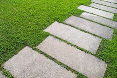 Path through grass Royalty Free Stock Photography