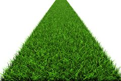 Path from a grass Stock Photography