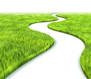 Path in grass. (3D rendered illustration over white background Stock Photo