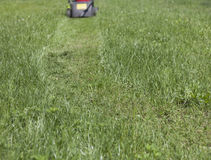 The path of the grass clippings Royalty Free Stock Photography