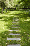 Path on the grass Royalty Free Stock Image