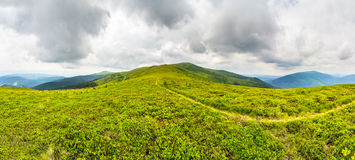 Path among the grass on mountain top Royalty Free Stock Photo