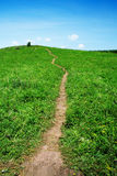 Path through grassland Stock Photos