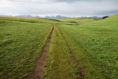 Path in grassland Royalty Free Stock Image