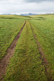Path in grassland Stock Images