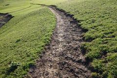 Path in grassland Stock Photos
