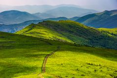 Path through grassy meadow on hillside. Beautiful summer landscape of great Carpathian water dividing ridge. Location TransCarpathia, Ukraine royalty free stock image