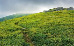 Path through grassy meadow to huge boulders. Dramatic landscape in mountains on a summer stormy morning stock photos