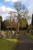 Path Through The Graveyard. Path through a graveyard with lots of headstones leaning over at various angles casting shadows Stock Image