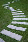 Path of green grass Royalty Free Stock Image