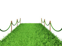 Path of green grass Stock Images