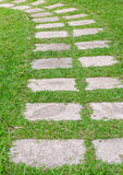 Path on green grass Royalty Free Stock Photos