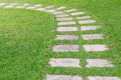 Path on green grass Stock Images