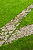 Path through a green lawn Royalty Free Stock Photo