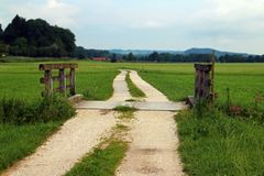 Path through green meadow Royalty Free Stock Photography