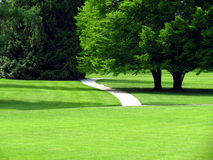 Path in green park Royalty Free Stock Photo