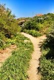 Path between green vegetation in Azenhas do Mar. Path between green vegetation and flowers under blue sky in spring in Azenhas do Mar village, Lisbon, Portugal stock photography