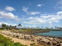 Path and Harbor in Ko Olina Stock Images