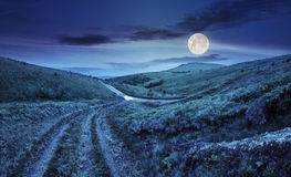 Path through highland meadows at night Stock Photography