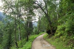 Path for hiking on a mountain slope Sinyuha. Altai Krai Royalty Free Stock Images